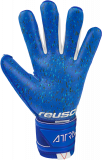 Reusch Attrakt Freegel Fusion 5170965 4010 blue back